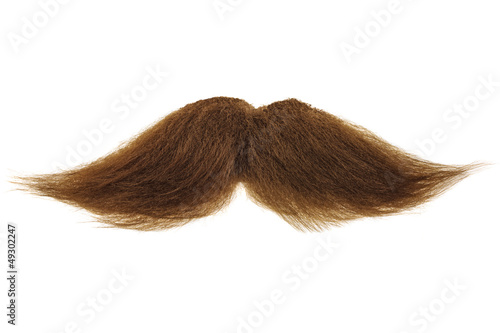 Brown mustache isolated on white Canvas Print