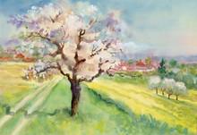 Watercolor Landscape Collection