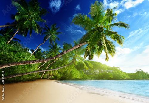 Foto Rollo Basic - sunset on beach, Mahe island, seychelles