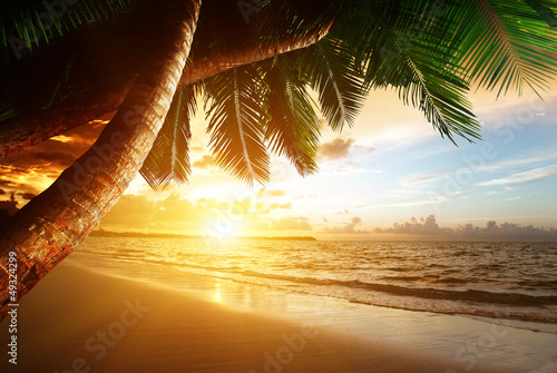 Foto-Rollo - sunrise on Caribbean beach (von Iakov Kalinin)