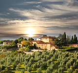 Luxury villa in Tuscany, famous vineyard in Italy