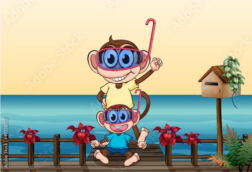 Fotobehang Beren Monkeys wearing goggles