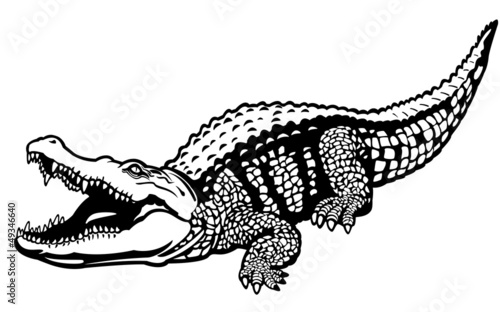 nile crocodile black white Wallpaper Mural