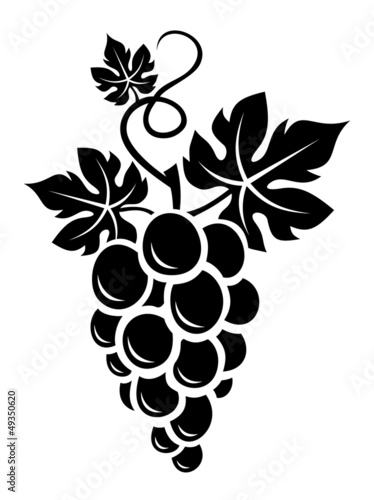 Fotografía  Black silhouette of grapes. Vector illustration.