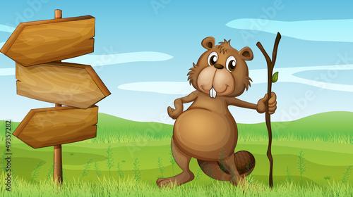Wall Murals Bears A beaver holding a wood beside a wooden signboard