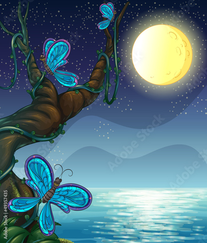 Canvas Prints River, lake Butterflies roaming around a big tree