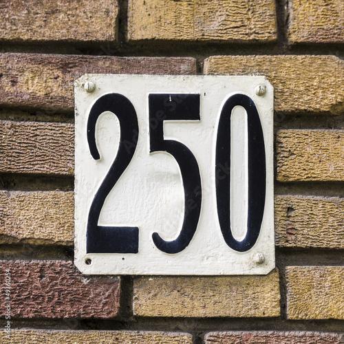 Papel de parede  Nr. 250