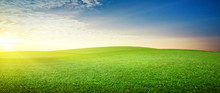 Panoramic Meadow