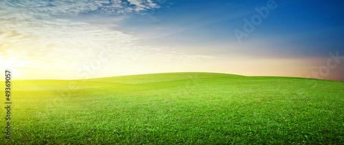 Fototapeta Panoramic meadow obraz