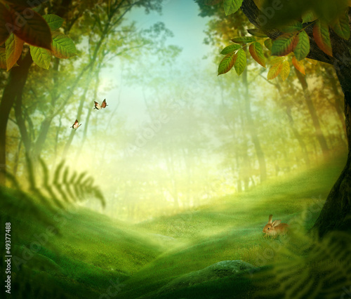Acrylic Prints Forest Spring design - Forest meadow