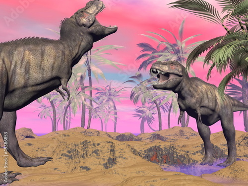Fotografie, Tablou  Tyrannosaurus argue - 3D render