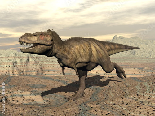 Fotografie, Obraz  Tyrannosaurus running - 3D render