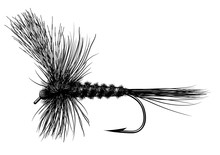 Tied Dry Fly