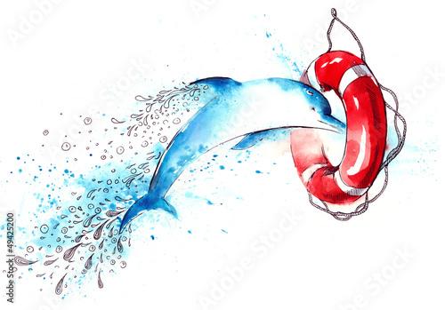 Poster Dolfijnen dolphin