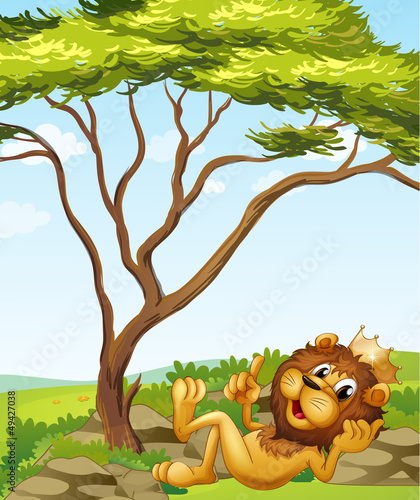 Printed kitchen splashbacks Cats A king lion lying down near the tree