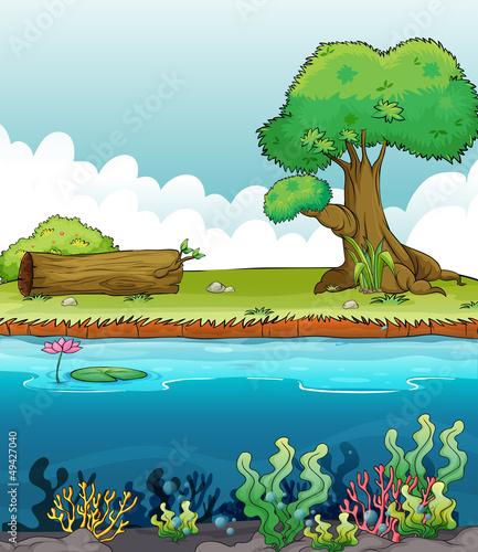Canvas Prints River, lake A deep sea