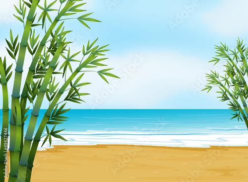 widok-na-plaze