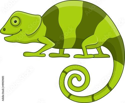 zielony-kameleon