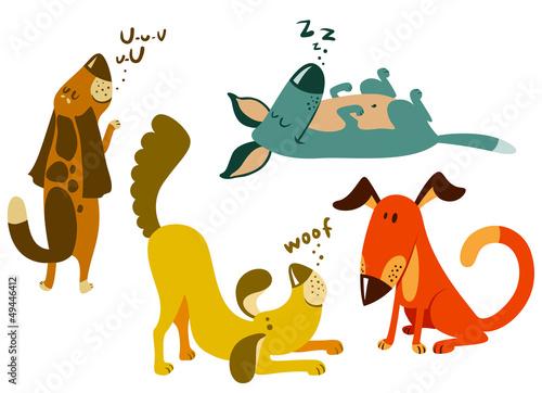 zestaw-psow