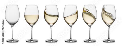 kolekcja-bialego-wina-splash