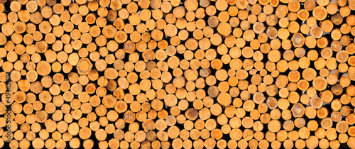 Tuinposter Brandhout textuur Stacked timber logs