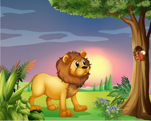 A Lion Watching A Squirrel