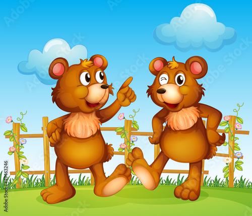 Happy faces of two bears