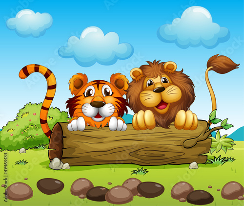 In de dag Boerderij A lion and a tiger hiding