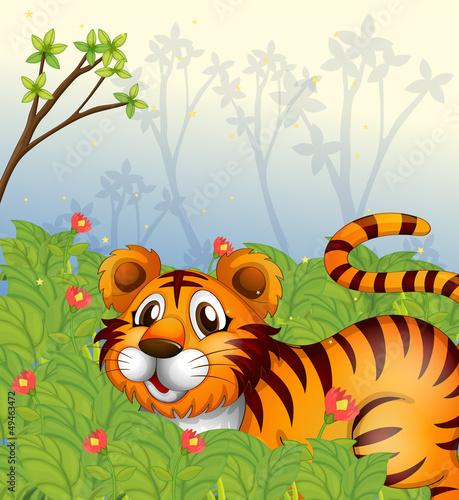 In de dag Vlinders A tiger in the dark forest