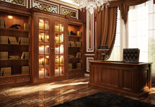 Beautiful Classic Library