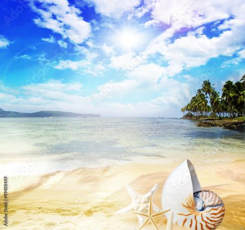 Foto-Schiebegardine Komplettsystem - Genuss pur: Karibischer Traumstrand mit Nautilus (von doris oberfrank-list)
