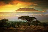 Fototapeta Sawanna - Mount Kilimanjaro. Savanna in Amboseli, Kenya