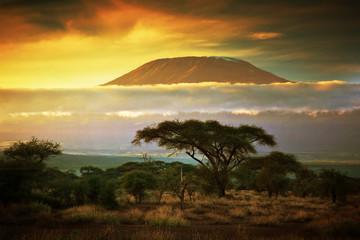 Fototapeta Mount Kilimanjaro. Savanna in Amboseli, Kenya