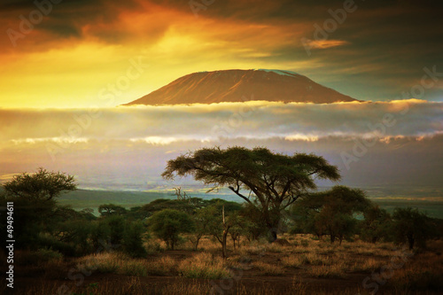 La pose en embrasure Afrique Mount Kilimanjaro. Savanna in Amboseli, Kenya