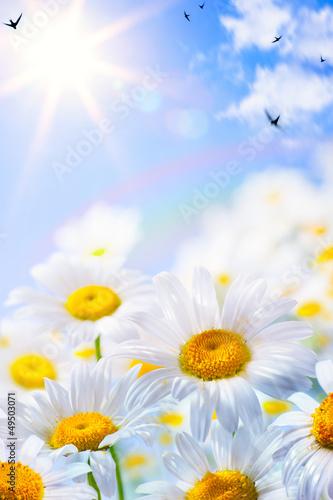 Foto-Lamellen - art floral spring or summer background