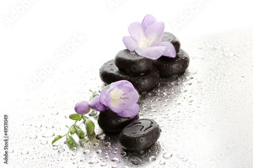 Akustikstoff - Spa stones and purple flower, on wet background
