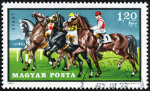 Stamp Printed By Hungary, Show...