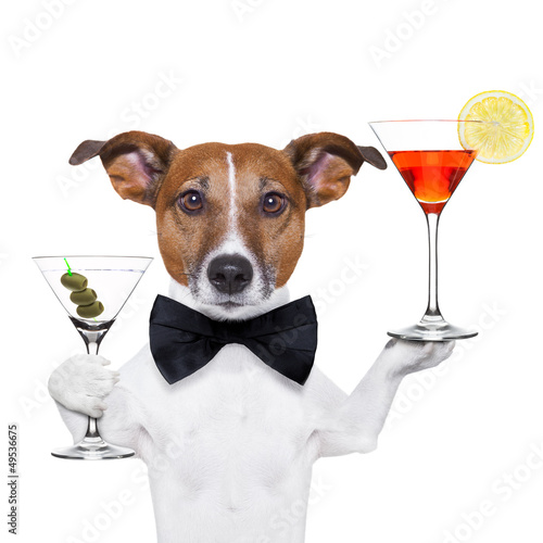 cocktail dog martini glasses плакат