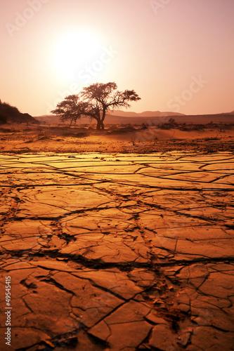 Poster de jardin Desert de sable Drought