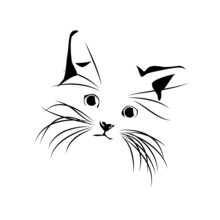 Vector Abstract Cat