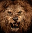 canvas print picture - Close-up shot of roaring lion