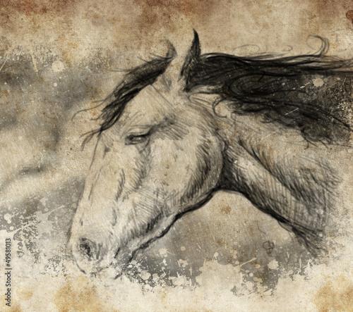 Nowoczesny obraz na płótnie Sketch made with digital tablet, horse head