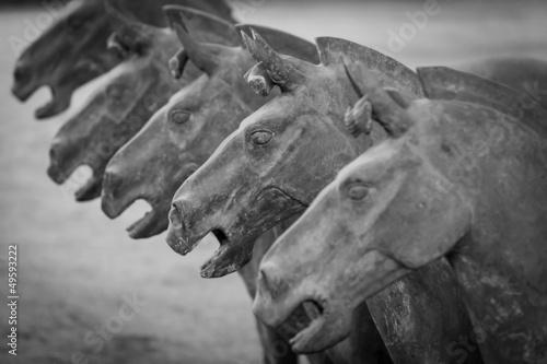 Foto op Plexiglas Xian Terracotta horses in Xian China