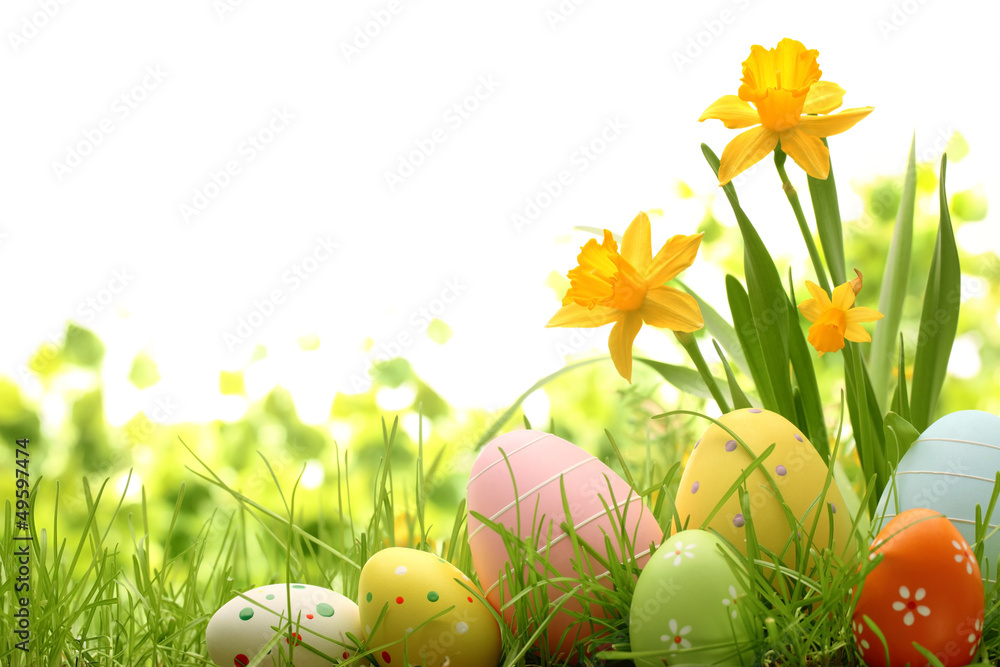 Photo  Easter Decoration