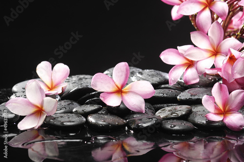 Poster Spa Set of frangipani with zen stones