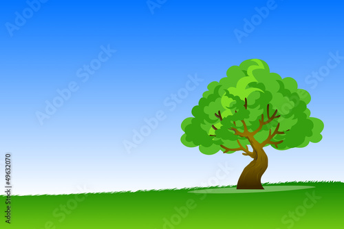 Fotobehang Wit Big tree background in the grassland