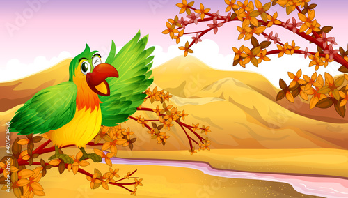 Wall Murals Birds, bees A green parrot in an autumn scenery