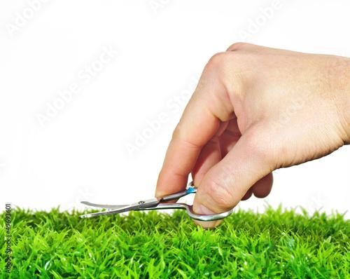 Fotografering  Rasen mit der Nagelschere schneiden