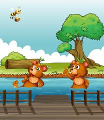 Medvjed koji pokazuje na pčelu