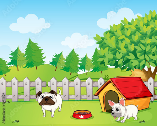 Tuinposter Honden Two bulldogs